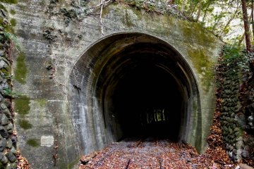 <p>A defunct railway tunnel located close by to the start of this walk</p>