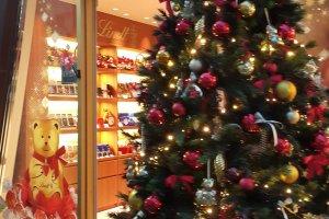 초컬릿 가게 린츠 앞에서 반짝거리는크리스마스 트리