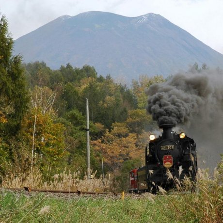 Niseko Steam Train