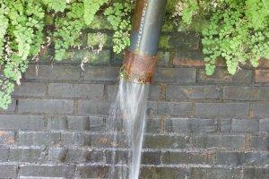 今でも豊富な湧水がパイプから流れている