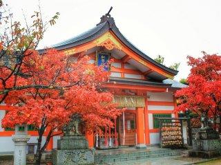 Красный клён перед красным храмом