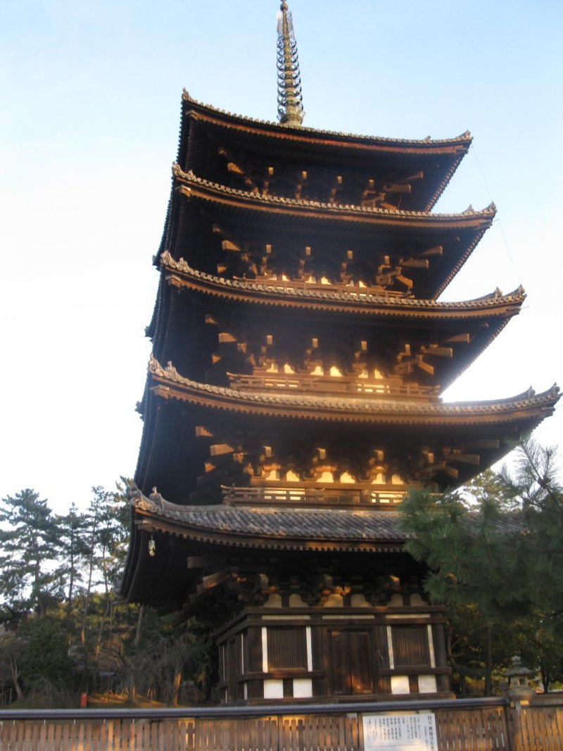 Kofukuji Temple in Nara - Nara - Japan Travel - Tourism ...