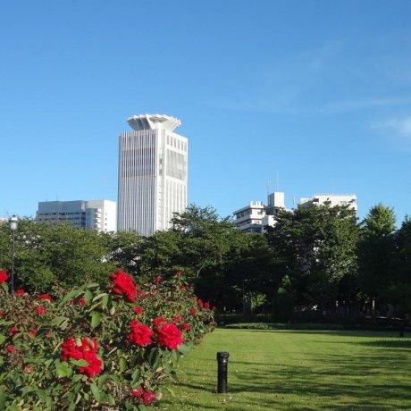 横須賀 ヴェルニー記念館