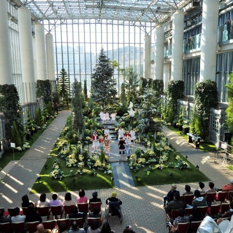 Christmas Flower Show on Awajishima