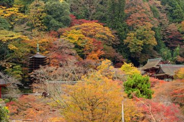 <p>Tanzan Shrine from the overlook</p>