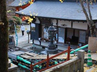 Golden ginko leaves on the steps of Shinsei-Den Hall