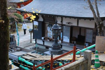 <p>Golden ginko leaves on the steps of Shinsei-Den Hall</p>