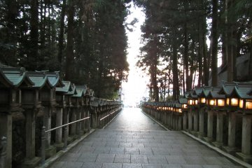 <p>The light at the end of Hozanji Temple&#39;s entrance way lantern and tree tunnel</p>