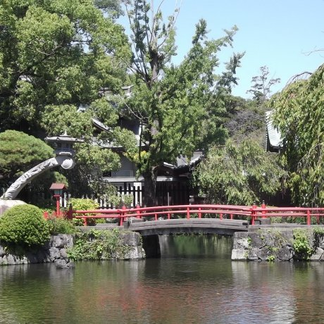 Du ngoạn Tokyo trong ngày:Mishima