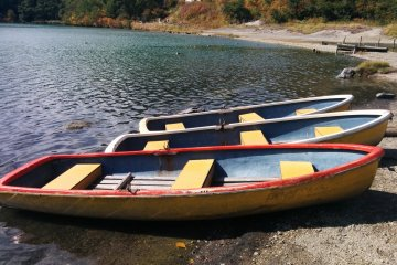 <p>Rental boats rest on shore, waiting for the next customer</p>