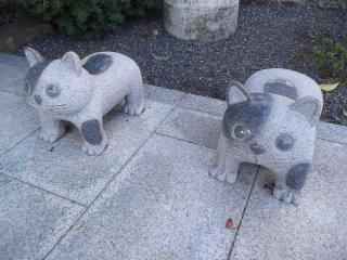 Algumas das muitas estátuas de animais fofas