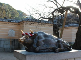It is believed that by rubbing the cow's head, it will bring you wisdom and good luck for examinations.