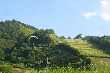 An advanced student swoops in for a landing after taking off from the top of Tainai