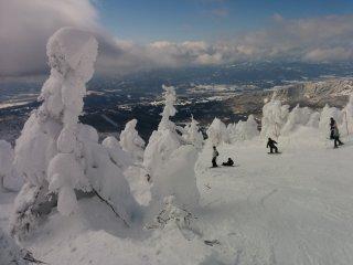 Снежные монстры выстроились вряд вдоль спуска