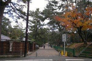 Salah satu jalur masuk menuju Nara Park