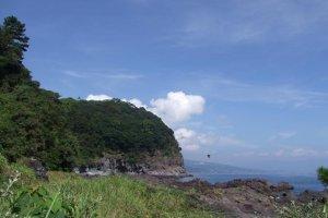岬にはシイ、クス、マツが茂り、心地よい木陰を作っている