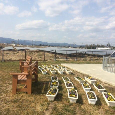 Solar Agripark di Fukushima