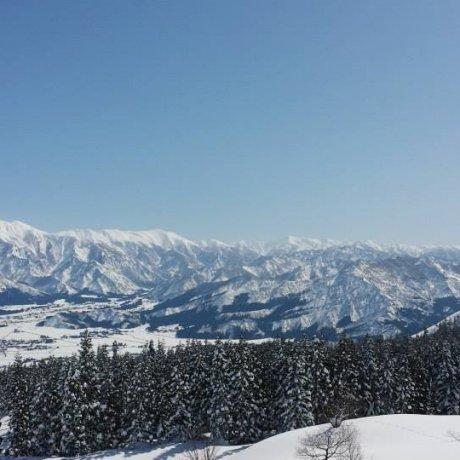 Joetsu Kokusai Ski Resort - Niigata