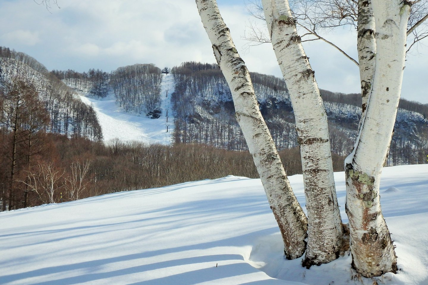 Although located deep in the mountains of Gunma, it takes only two hours to reach the resort from Tokyo.