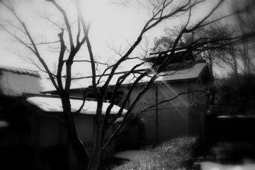 요코칸 정원의 맨가지에 빛나는 한 줄기 빛