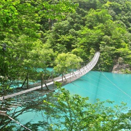 Висячие мосты в Суматакё
