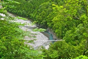 The Saru Ami no Tsuri Bashi from the path to the Yumei no Tsuri Bashi (June)