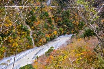 The Sumatakyo in it's full autumn glory