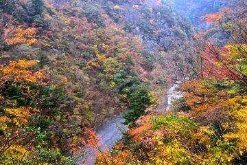 가을의 스마타쿄