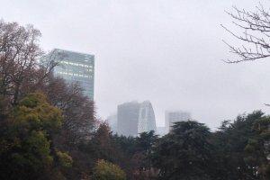 Kabut sore menutupi gedung-gedung pencakar langit.