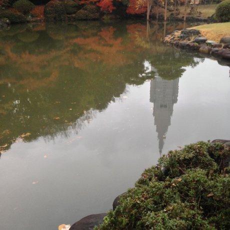 Musim Gugur A La Shinjuku Gyoen