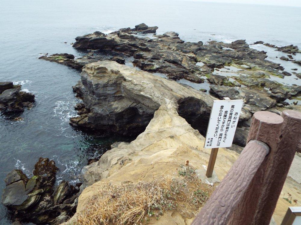 Jogashima Island Park