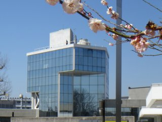 The museum as seen from the treed park on a sunny day in early March