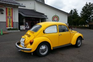 Professor Agasa's yellow beetle