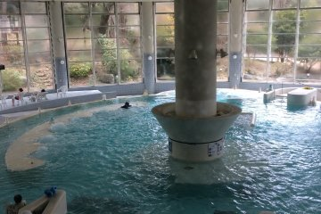 Leisure Pool & Onsen, Moka, Tochigi