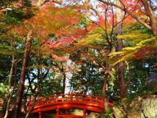 Chiêác cầu đỏ kiểu Nhật