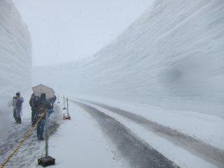 """Le point fort de Murodo est le couloir de neige (""""canyon de neige"""") entièrement en neige et mesurant 20m de hauteur. Un petit passage est ouvert aux piétons entre avril est juin"""
