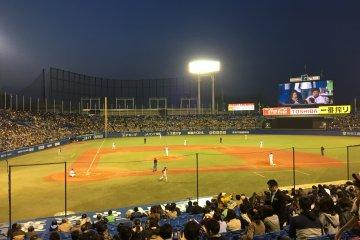 Du Baseball au Meiji Jingu Stadium