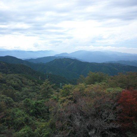 Đường lên núi Kongo