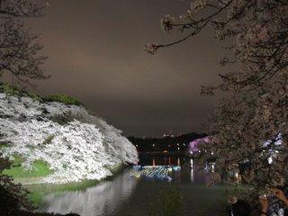 Hình ảnh phản chiếu đẹp trên hào Chidorigafuchi