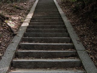 Talk about a stair-master...