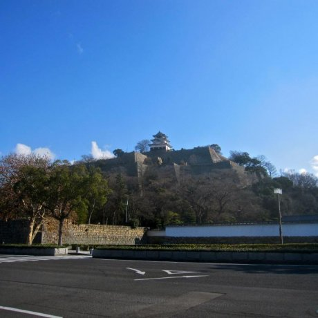 Monumental Stone Walls of Marugame Castle
