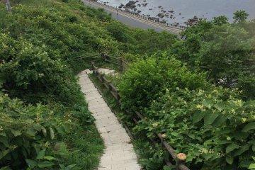 700km Michinoku Trail English Info