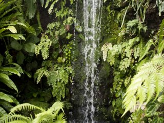 Manmade waterfall in the garden