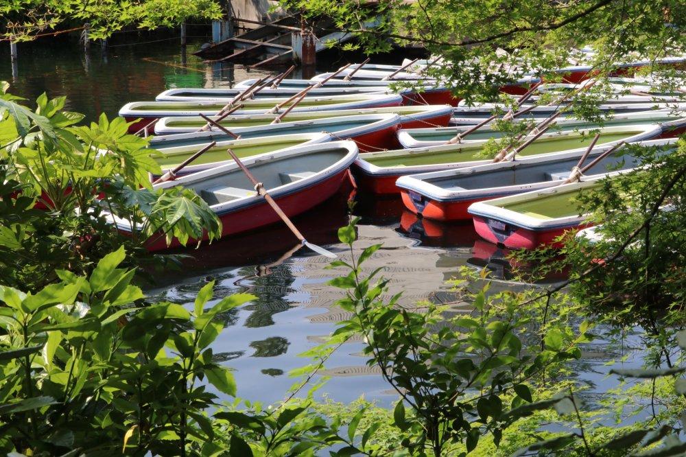 Boats docked on Ingoshira lake