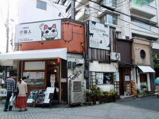 A cat cafe just before entering the Shinkyogoku Street