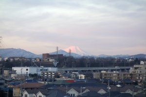 The mountain shines a rose pink colour making Mt. Fuji stand out from afar