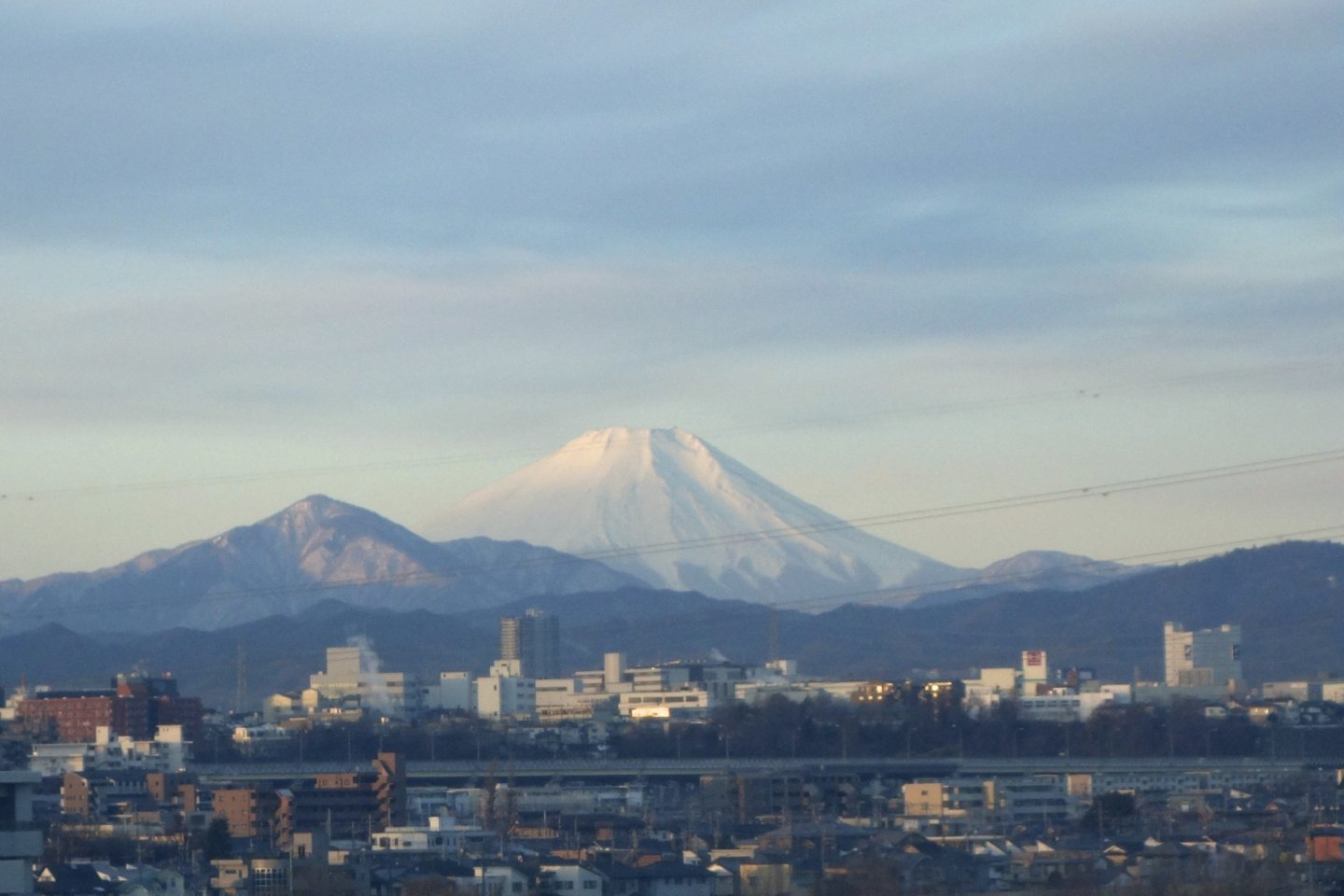 Japan\'s symbol blends quietly into the background of the cement jungle