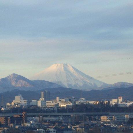 Mt. Fuji Views from Spots in Tokyo