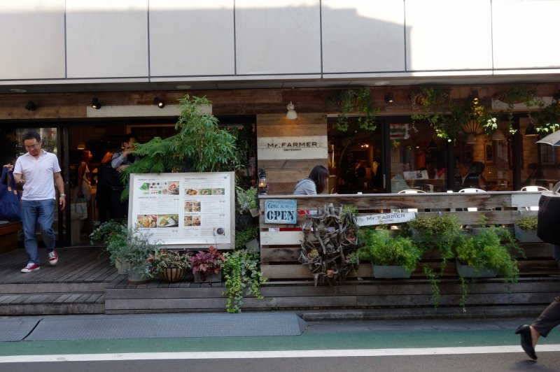 A cafe with a cosy interior and lots of decorative foilage offers patrons a slice of a sophisticated, stylish lifestyle