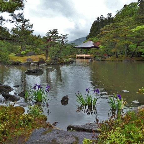 Ngày mưa ở Jorakuen, Fukushima